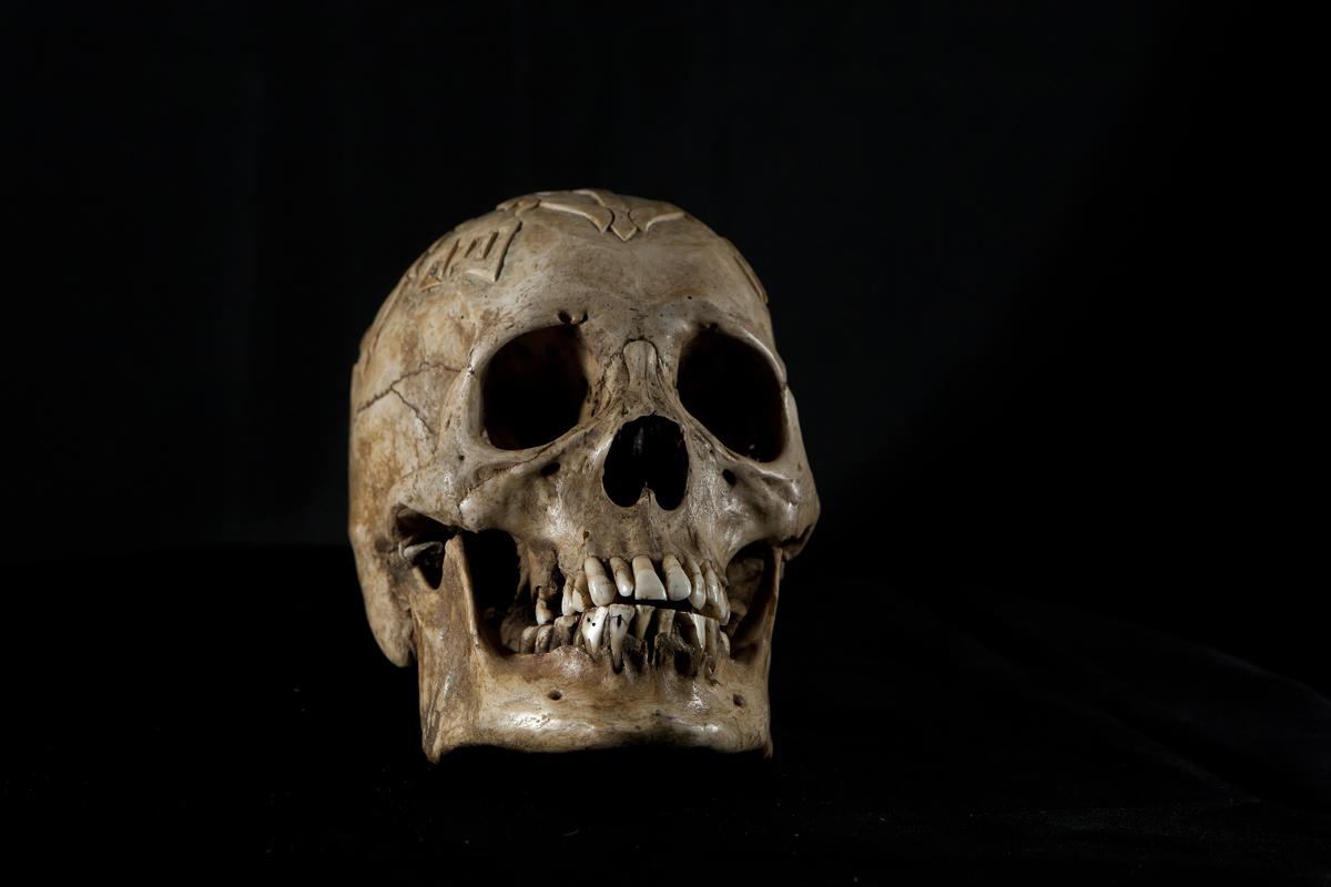 SkullFrontCropSmall
